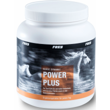 Horse Dynamic POWER PLUS +Magnesium +Lysin